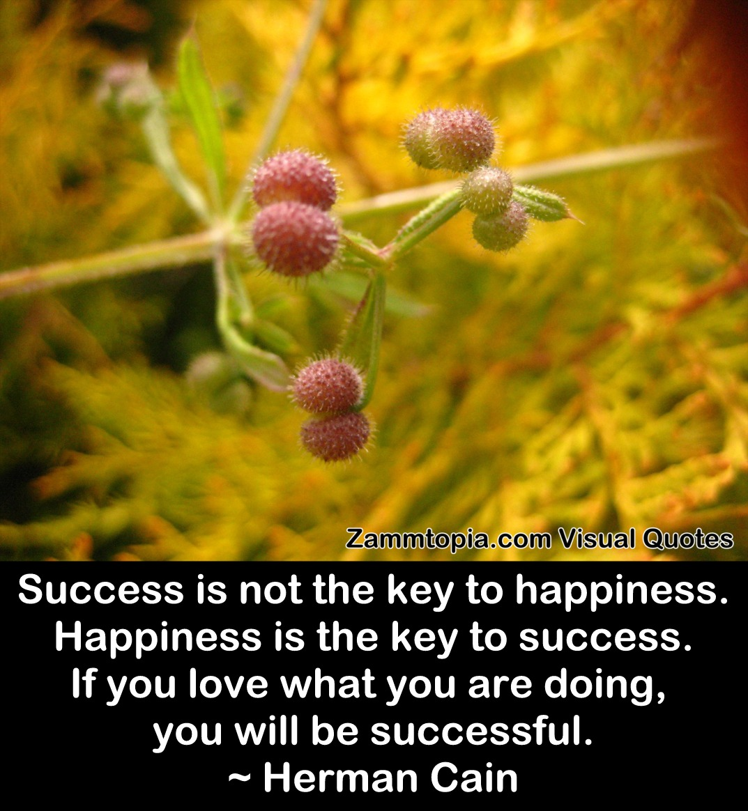 Herman Cain on Success